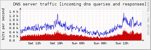 DNS server traffic [incoming dns queries and responses]